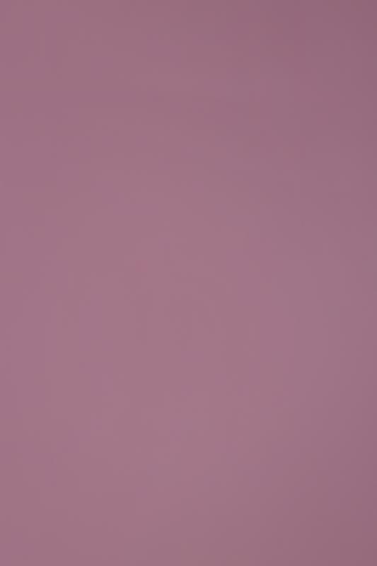 MS 2000 粉红