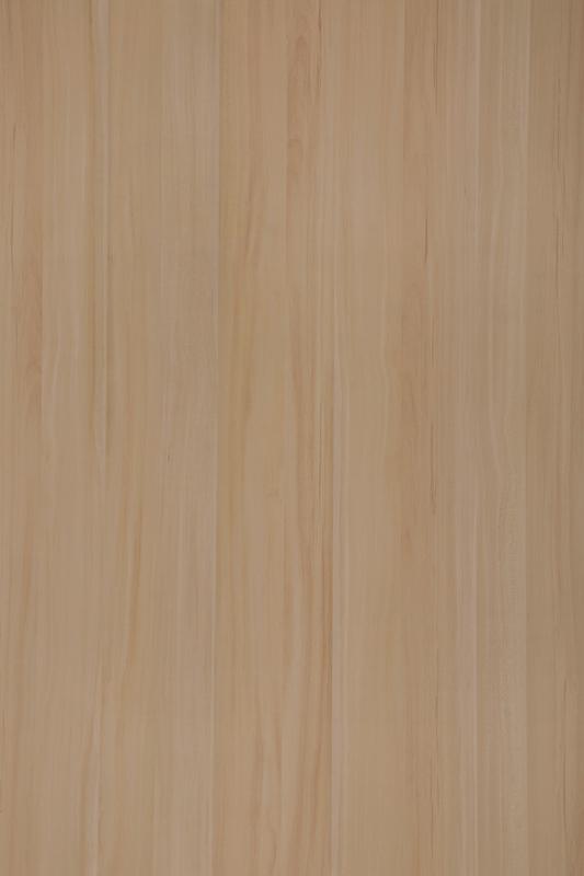 MS 2088 北美枫木