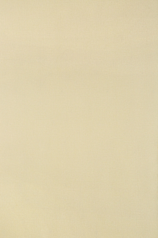 MS 2060 米黄布纹