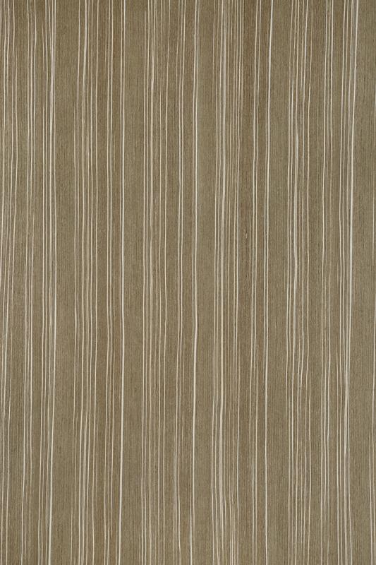 MS 2099 斑马纹