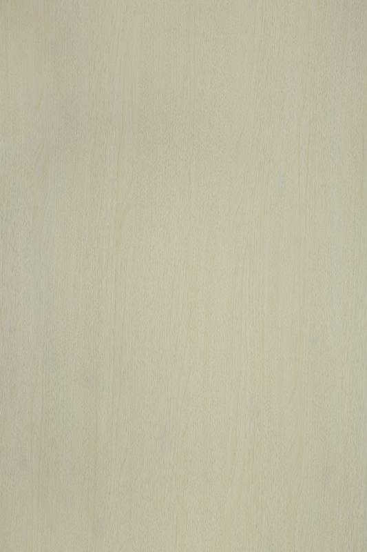 MS 0108 白橡木